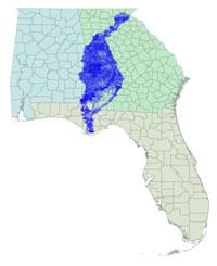ACF Basin